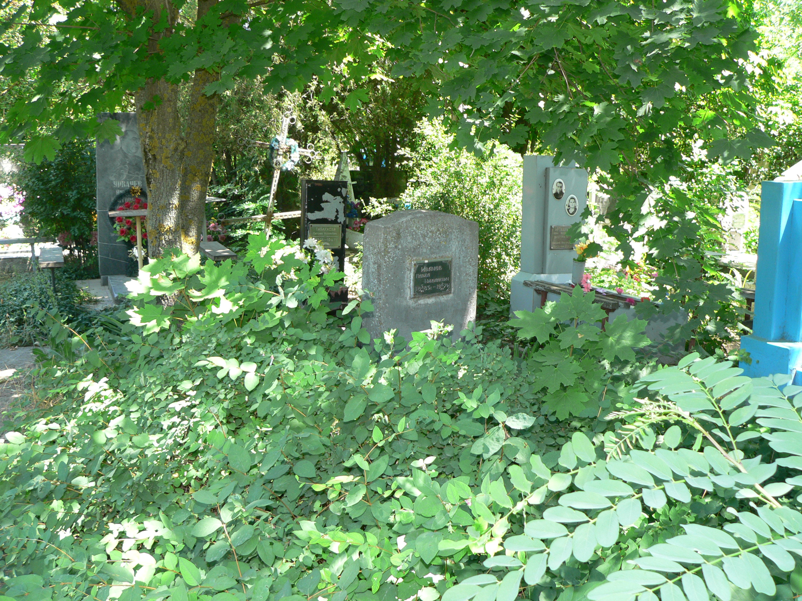 An unreal surprise on my birthday find lost russian ukrainian family here is the overgrown mess that surrounds my grandfathers grave anyone who finds their relatives graves in russia surrounded by beautiful flowers and izmirmasajfo